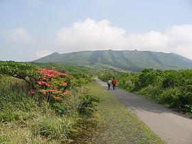 280px-Izu-Oshima-IMG_4759[1]