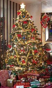 175px-User_Zink_Dawg_2009_Christmas_Tree[1]
