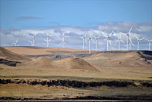 300px-Shepherds_Flat_Wind_Farm_2011[1]